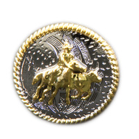 Gold Camdrafter on Silver - 20mm - Pack of 6 - Concho-08