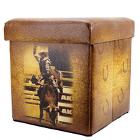 Collapsible Folding Trunk - Bullrider -07