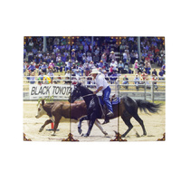 3 Piece Canvas Prints - Campdraft - W69