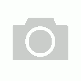 Embossed Chocoloate Leather w/ Floral Conchos - 355-42