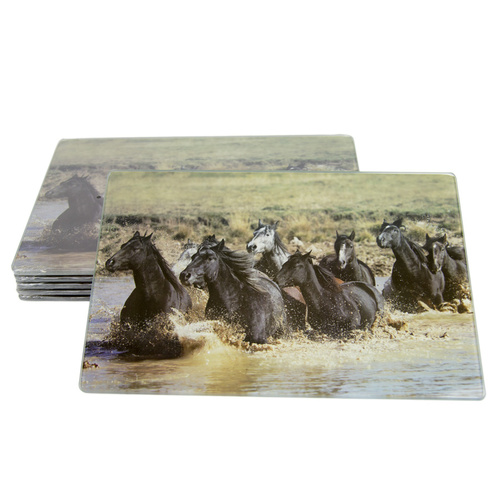Placemats Set of 6 - Muddy River - P101-10